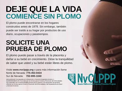 Pregnancy Poster - Spanish